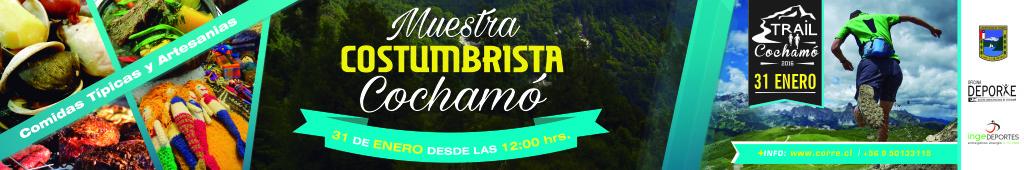 lienzo_cochamó_alta